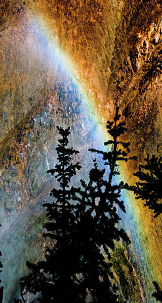 Photograph - Yellowstone Rainbow by Norman Hall
