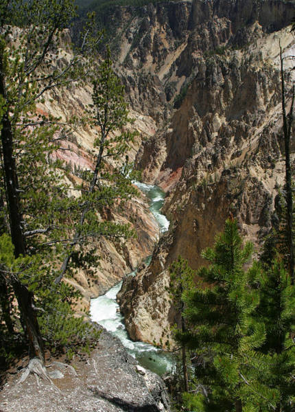 Earthtones Photograph - Yellowstone River by Linda Phelps