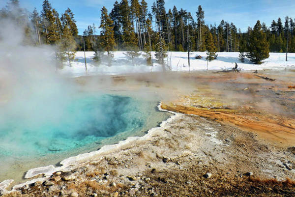 Photograph - Yellowstone Thermal Pool by C Sitton