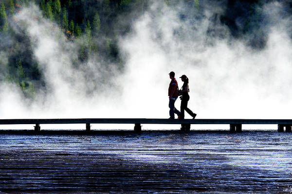 Photograph - Yellowstone Walkers by Ann Lauwers