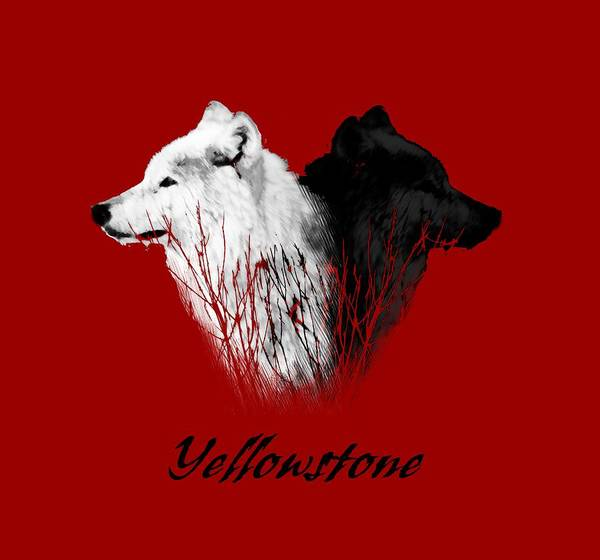 White Wolf Photograph - Yellowstone Wolves T-shirt by Max Waugh