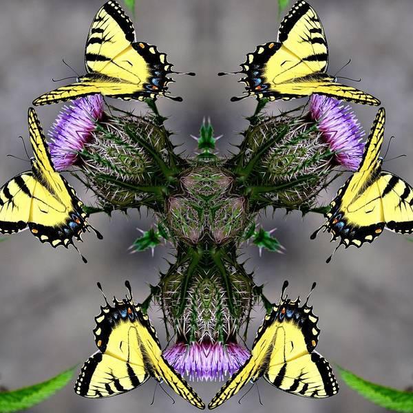 Katrina Digital Art - Yelow Butterflys by Katrina Johns