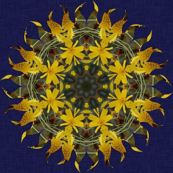 Katrina Digital Art - Yelow Flower Sun Rays by Katrina Johns