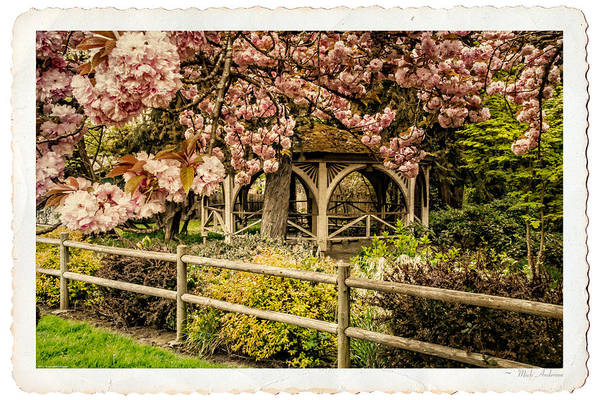 Rogue Valley Photograph - Yesteryear Romance by Mick Anderson