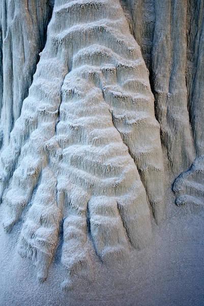 Entrada Photograph - Yetti's Paw by Mike  Dawson