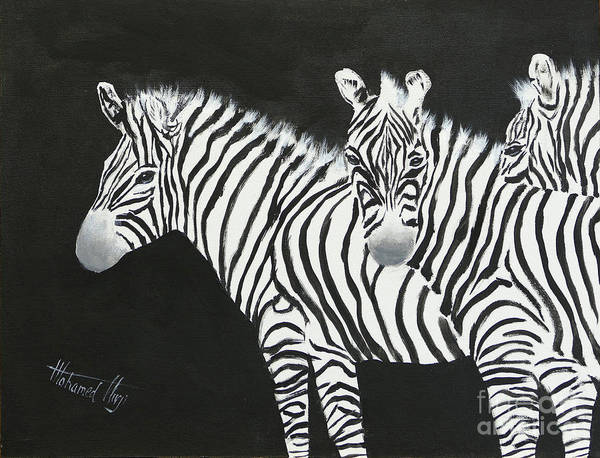 Zebra Painting - Yin And Yang Triptych White On Black by Mohamed Hirji