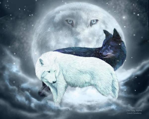 Mixed Media - Yin Yang Wolves by Carol Cavalaris