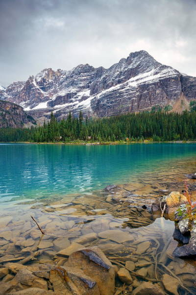 Photograph - Yoho National Park by Songquan Deng