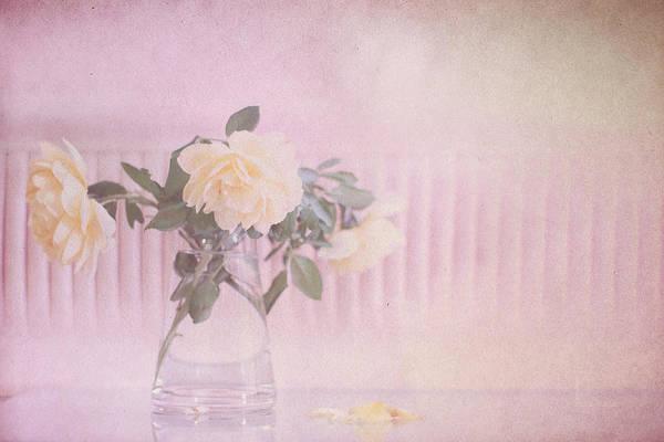 Photograph - Yolande by Elaine Teague