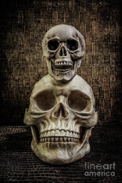 Photograph - Yorick Stacked Skulls by Edward Fielding