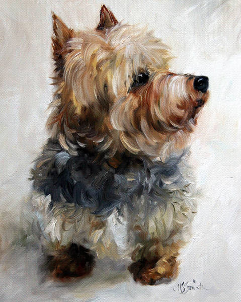 Yorkshire Terrier Painting - Yorkie by Mary Sparrow