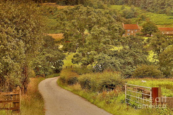Photograph - Yorkshire Countryside by Martyn Arnold
