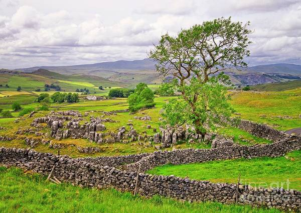 Photograph - Yorkshire Dales Landscape Malham by Martyn Arnold