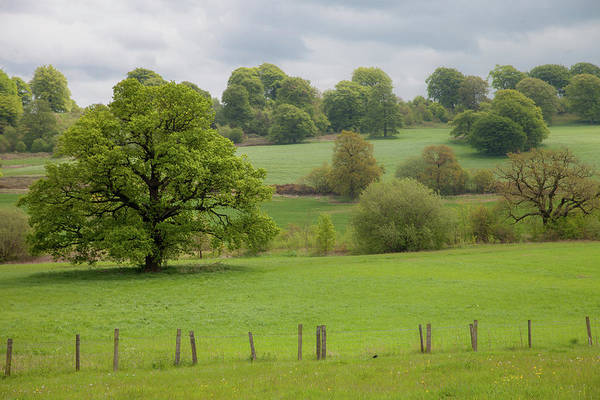 Wall Art - Photograph - Yorkshire Dales Pastoral by W Chris Fooshee
