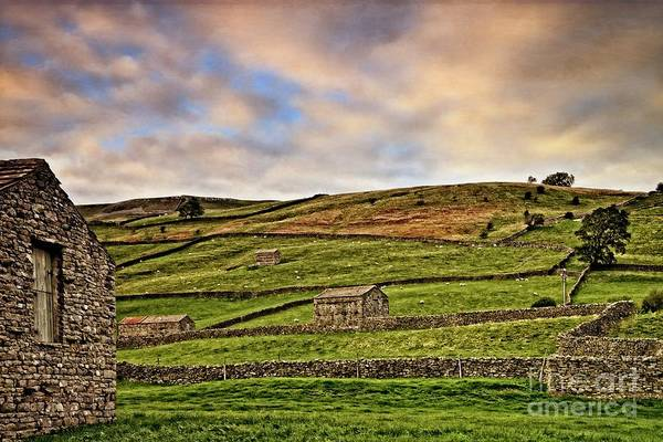 Photograph - Yorkshire Dales Stone Barns And Walls by Martyn Arnold