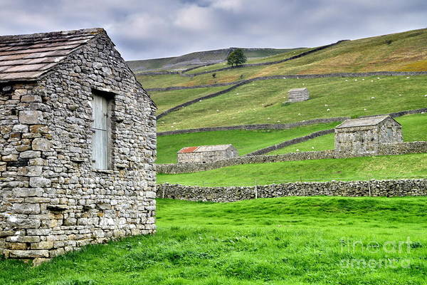 Photograph - Yorkshire Dales Stone Barns by Martyn Arnold