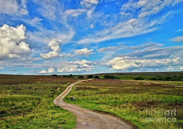 Photograph - Yorkshire Moors Landscape by Martyn Arnold
