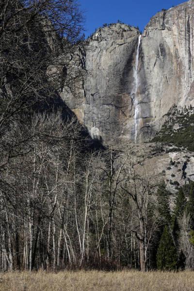 Photograph - Yosemite Falls by Adam Rainoff