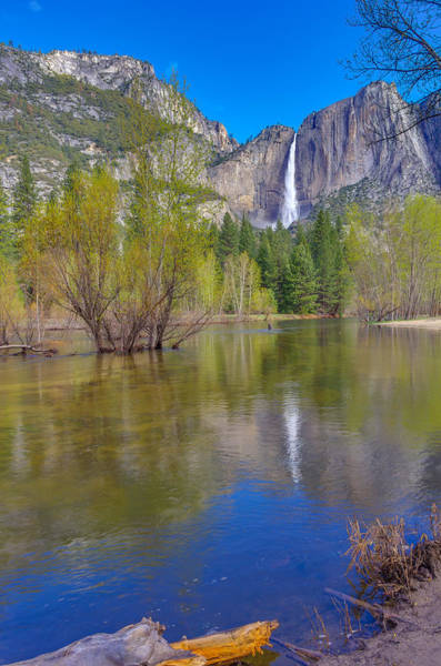 Photograph - Yosemite Falls Cook's Meadow by Scott McGuire