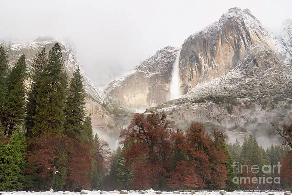 Photograph - Yosemite Falls by Richard Sandford