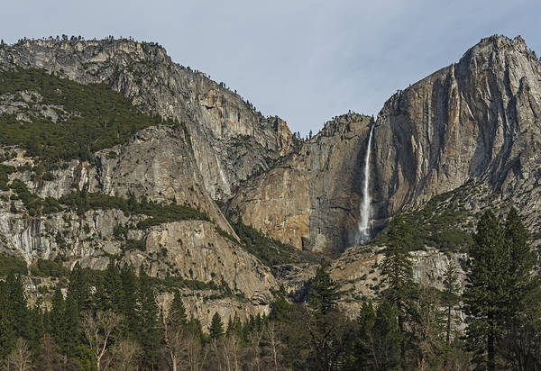 Photograph - Yosemite Falls View by Loree Johnson