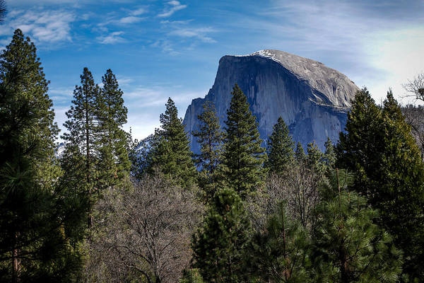 Photograph - Yosemite Half Dome by Adam Rainoff