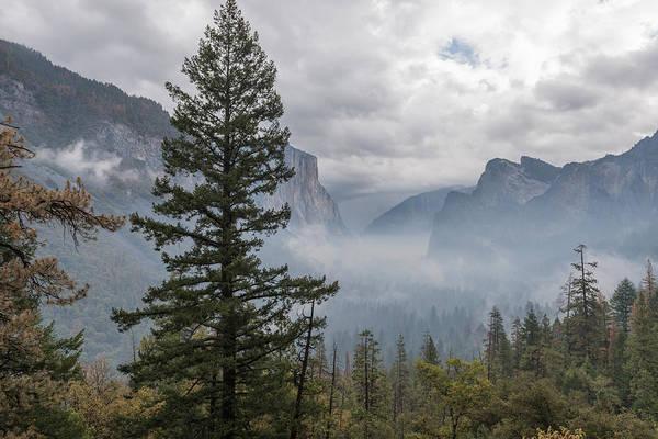 Photograph - Yosemite by John Johnson
