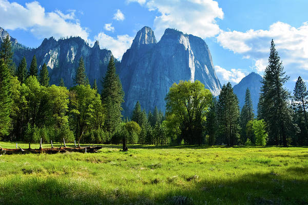 Photograph - Yosemite Meadows by Kyle Hanson