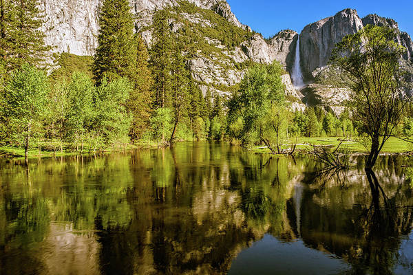Photograph - Yosemite Reflections On The Merced River by John Hight