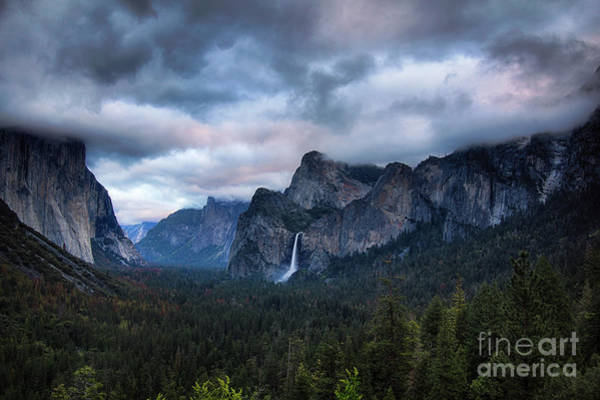 Photograph - Yosemite Valley  by Brandon Bonafede