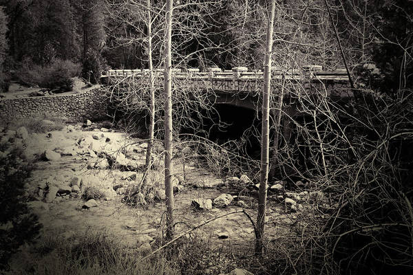 Earthtones Photograph - Yosemite Valley Bridge by Bonnie Bruno