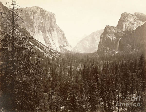 Photograph - Yosemite Valley, C1865.  by Granger