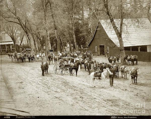 Photograph - Yosemite Valley, California Circa 1885 by California Views Archives Mr Pat Hathaway Archives