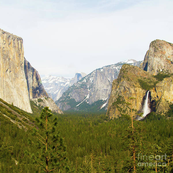 Photograph - Yosemite Valley Half Dome El Capitan And Bridalveil Fall 7d6067sq by Wingsdomain Art and Photography