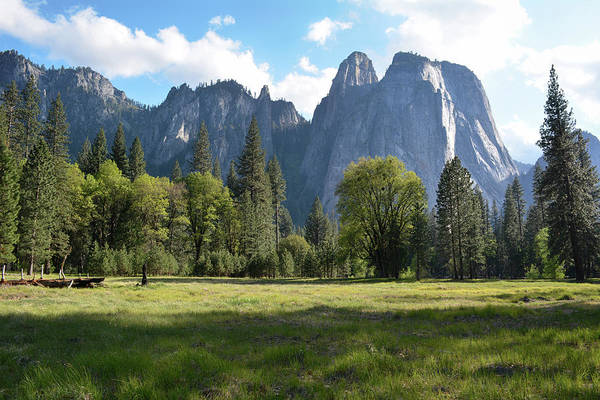 Photograph - Yosemite Valley Meadow by Kyle Hanson