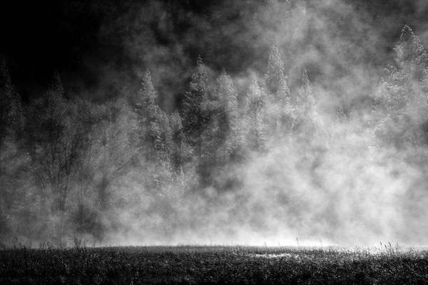 Wall Art - Photograph - Yosemite Valley- Mist On A Winter  Morning by Jim Dohms