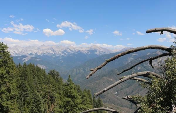 Photograph - Yosemite View  by Christy Pooschke