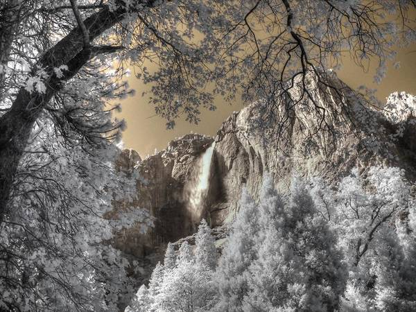 Wall Art - Photograph - Yosemite Waterfall by Jane Linders