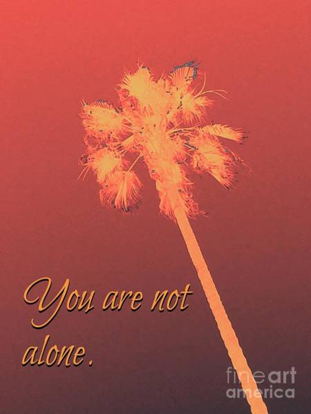 Photograph - You Are Not Alone by Jenny Revitz Soper