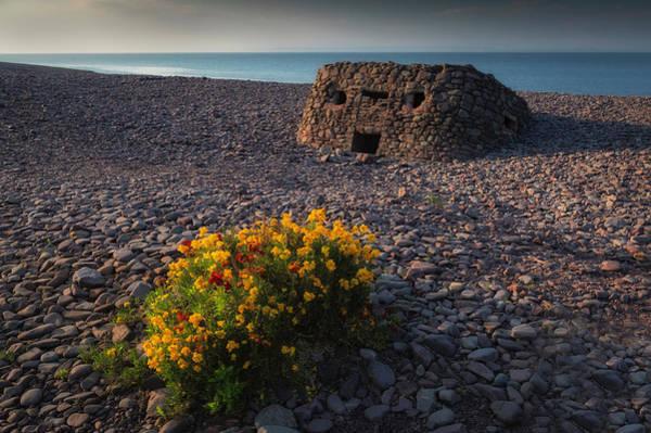 Weir Wall Art - Photograph - You Bought Me Flowers by Nigel Jones