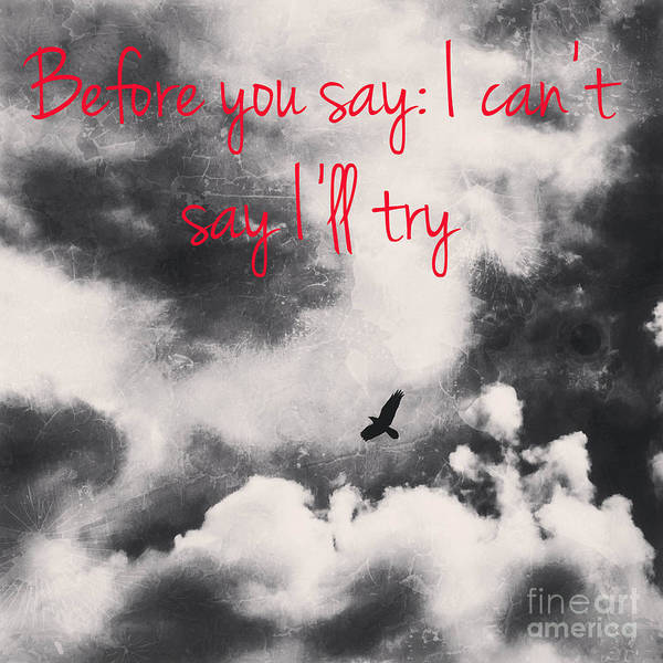 Photograph - You Can Fly by Jenny Revitz Soper