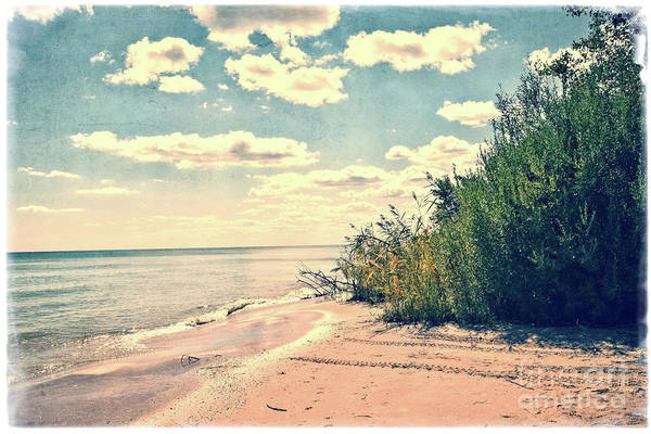 Wall Art - Photograph - You Walked Away - Wisconsin by Mary Machare