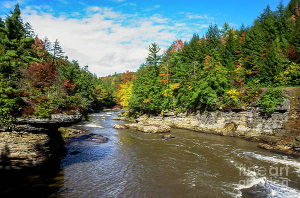Photograph - Youghiogheny River by Thomas R Fletcher