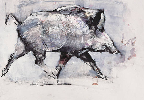 Poland Painting - Young Boar by Mark Adlington