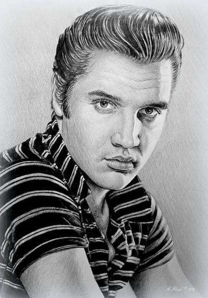 Handsome Drawing - Young Elvis Bw by Andrew Read