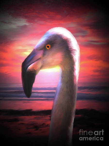 Digital Art - Young Flamingo - Thinking Pink by Lisa Redfern