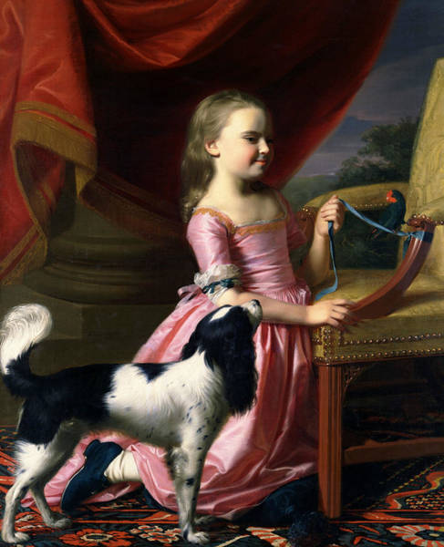 Drapes Painting - Young Lady With A Bird And A Dog by John Singleton Copley