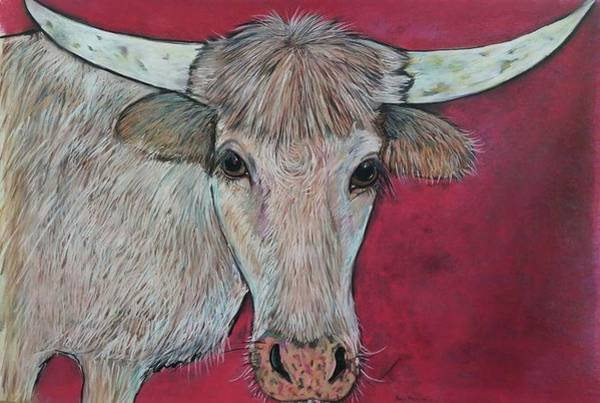Wall Art - Painting - Young Longhorn  by Arrin Burgand