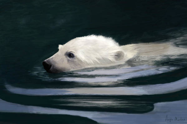 Digital Art - Young Polar Bear Swimming by Angela Murdock