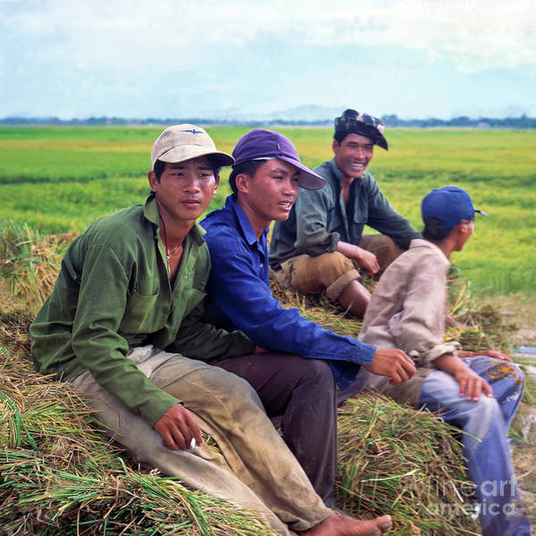 Photograph - Young Rice Farmers by Silva Wischeropp